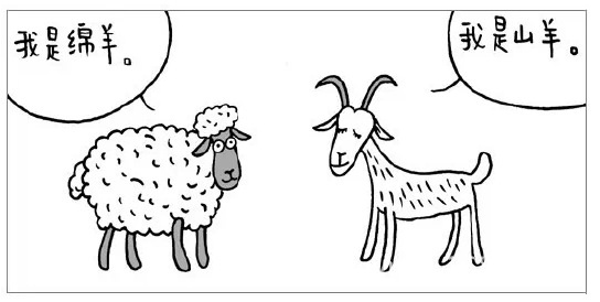 羊毛与羊绒的区别是什么?